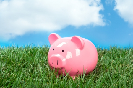 piggy bank: A pink piggybank in a meadow of green grass and a blue, puffy white cloud sky. Stock Photo