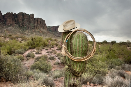 superstition: A moody image of a lasso and cowboy hat hanging on saguaro cactus in the Superstition Mountains in Arizona. Stock Photo