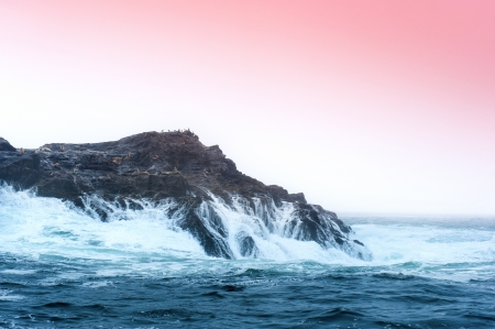 inversion: A small rock island in the middle of the ocean is home to several sea lions who use the island for protection and warmth. Shot in the early morning where the cold weather allows the capture of an inversion layer.