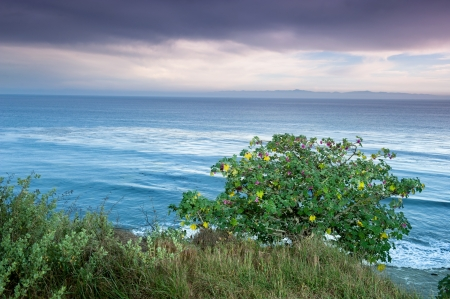 A scenic ocean overlook in Santa barbara, California shows a storm moving in late in the day. Stock Photo - 19603866