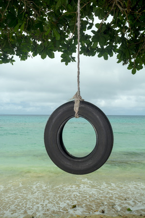 tire: An old tire swing in the south pacific hangs from a tree on a beautiful tropical beach.