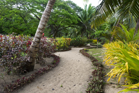 south pacific: A trail through a lush south pacific resort garden shows the detail given to elegance. Stock Photo
