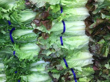 romaine: Fresh, crisp romaine lettuce nicely arranged at a local farmers market produce section