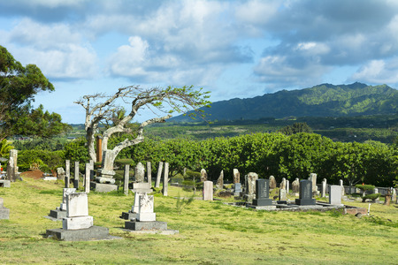 Small churchground cemetery with old headstones from the early 19th century in Hawaii Publikacyjne