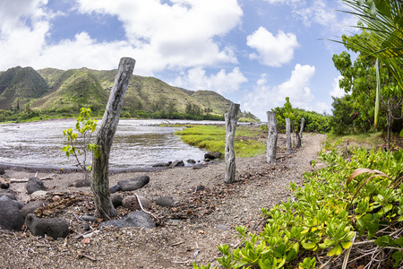 end of the trail: A remote trail along the east end of Molokai Island leads to a beautiful beach facing a very untraveled part of Hawaii Stock Photo