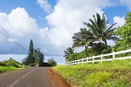 back country: A back country road in a remote part of Kauai, Hawaii with beautiful green grass and a white fence lining the roadway.