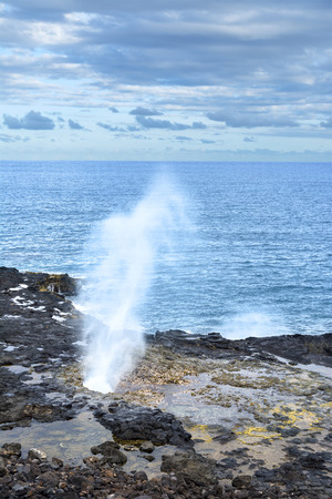 swells: A reef in Kauai Hawaii hosts a blow hole that when swells hit, water spouts out of the hole high into the air.