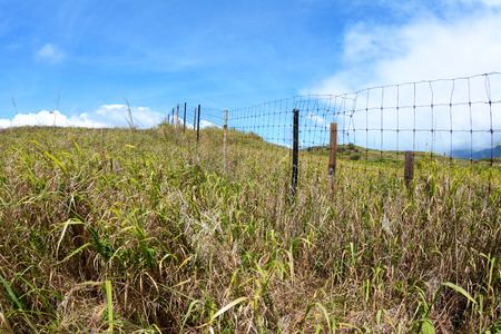 creates: A wire fence in a grassy field creates a boundary to prevent livestock from wandering away from a farm.