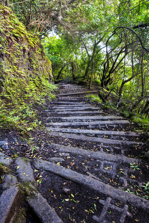 traction: A four-mile wet, muddy trail with cinder block steps down a tropical Hawaiian mountain on Molokai leads to a small town of only a handful of residents and is the only access other than by sea.
