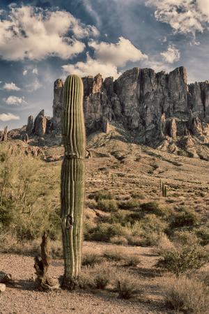 rugged terrain: An image of the Superstition desert in Arizona shows the rugged detail of a dry wilderness with a saguaro cactus Stock Photo