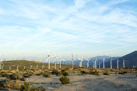 molinos de viento: molinos de viento de energ�a renovable se alinean en las cimas de las monta�as de Palm Springs
