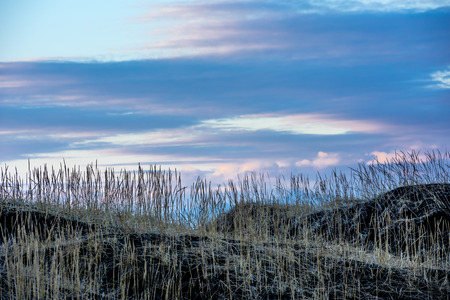 A grassy marsh along a hillside in Iceland framed against a pastel sunset as the day slips to night.