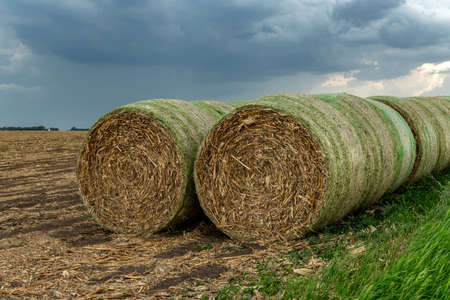 Twenty hay bales are stacked on a hillside at a farm in the Midwest. The hay is used as feed for various farm animals.