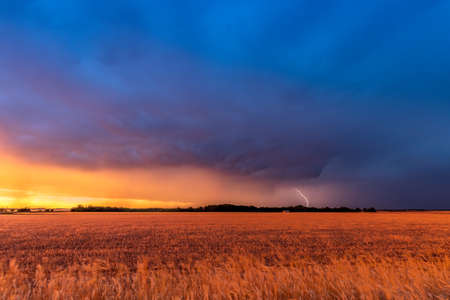 A mesocyclone weather supercell, which is a pre-tornado stage, passes over the Great Plains while pouring rain and cracking lightning highlight the horizon.