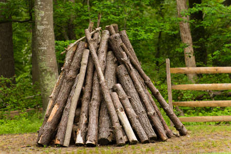 undisturbed: A triangular wood stack in front of an opening in a fence in a green park area Stock Photo