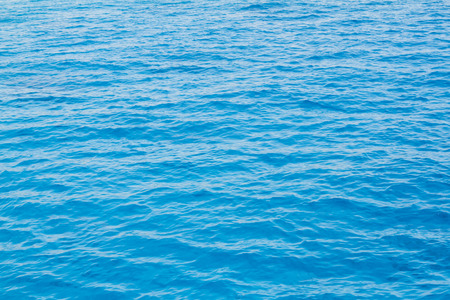 warm water fish: Tropical blue water from the Red Sea