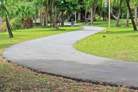 walking pole: A walking path and light pole in the beautiful park