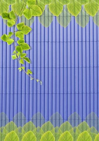 rooftile: Verde texture foglie su blu tegola sfondo. Archivio Fotografico
