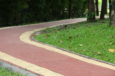 modern path curving through lawn in park  photo
