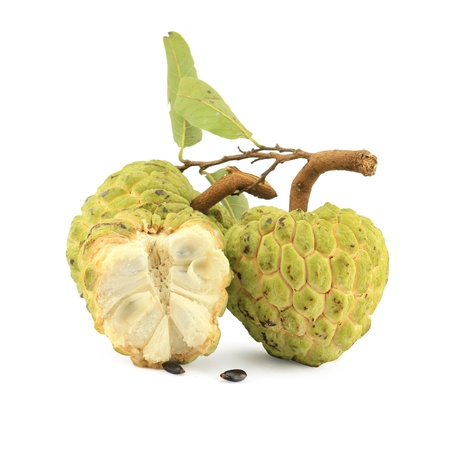squamosa: Sugar apple [Annona squamosa] with cross section, showing a lobe of fruit and pulpy segments with seeds.