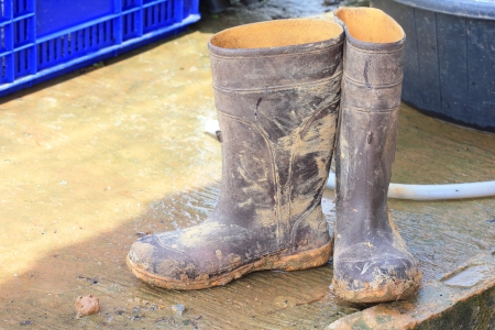 Muddy rubber boots on work place