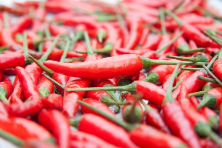 Chili, cooking, and tasting. Stock Photo