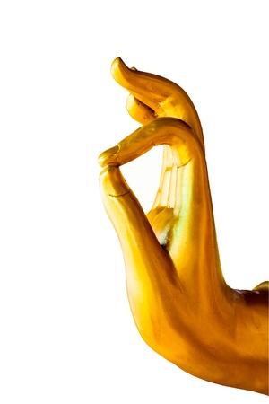 Buddha hand white background.