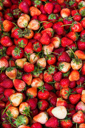 strawberrys: Strawberrys fresh and sweet, delicious and healthy. Stock Photo
