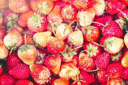 strawberrys: Strawberrys the combinations and plenty of pastel colors. Stock Photo