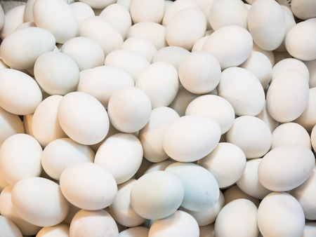 egg white proteins that are beneficial to the body.