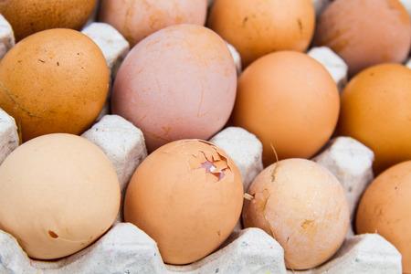 Die Eier sind gesund und gut für die Gesundheit.