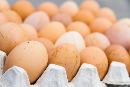 The eggs are healthy and good for health.