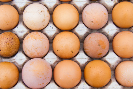 Eggs are health benefits And high protein