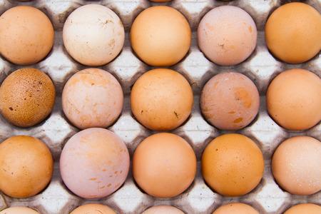 Eier sind Nutzen für die Gesundheit und eine hohe Protein
