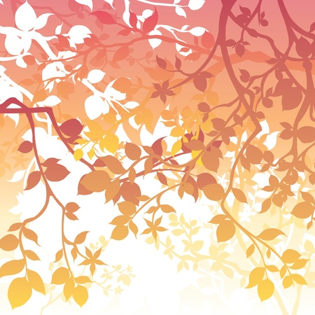 Spring Background Illustration