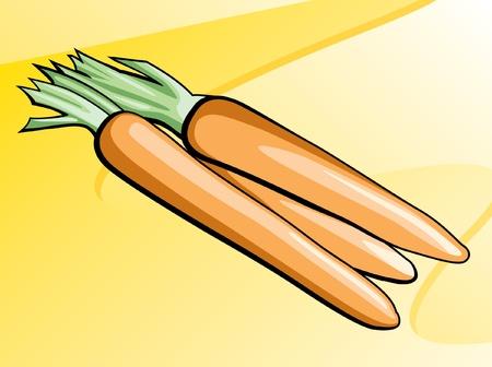 Carrots Illustration Illustration