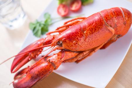 Seafood Lobster Фото со стока