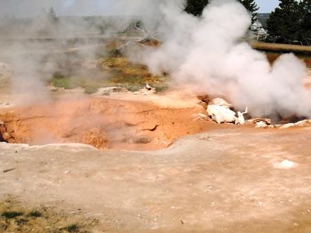 Mud pots 스톡 콘텐츠