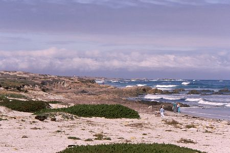 beautiful california coastline and beach under wintery sky