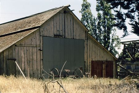 Old barn and farm implement in heavily weeded field