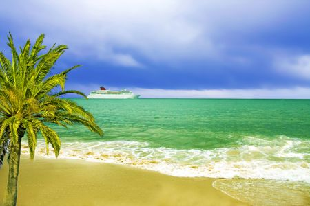 Palm tree and cruise ship in background photo
