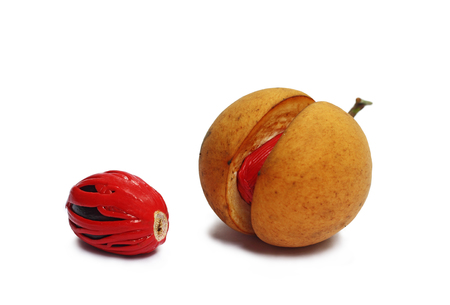 Nutmeg is the only spice delivering two distinct flavors. Grows in tropical regions. Genus is Myristica.