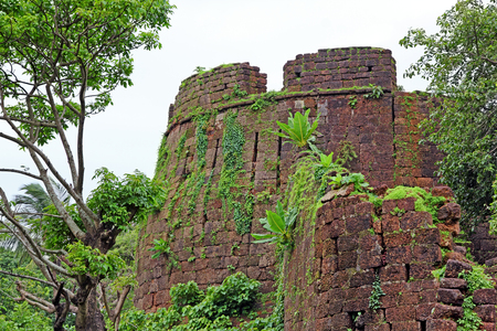weed block: Remains of one of the turrets of Cabo de Rama Fort in Goa, India. A centuries old fort, last owned by the Portuguese during their occupation of Goa.