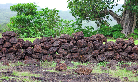 loosely: Old, abandoned, loosely packed boundary wall made of locally available rough laterite stone blocks in Goa , India Stock Photo