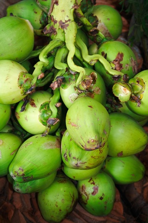 A cluster of coconut fruits photo