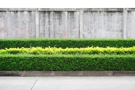 A small decorative park on street isle and dirty wall isolated on white background