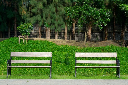 Dual benches in the park photo