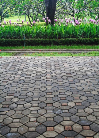 The brick pavement in the garden Stock Photo - 11912273