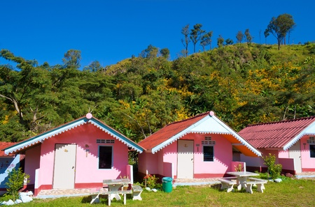 Arranged pink houses in front of a mountain