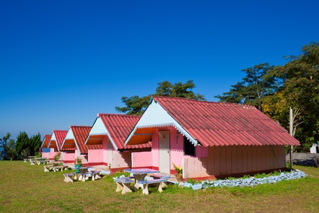 Arranged pink houses in a yard Stock Photo - 12572342